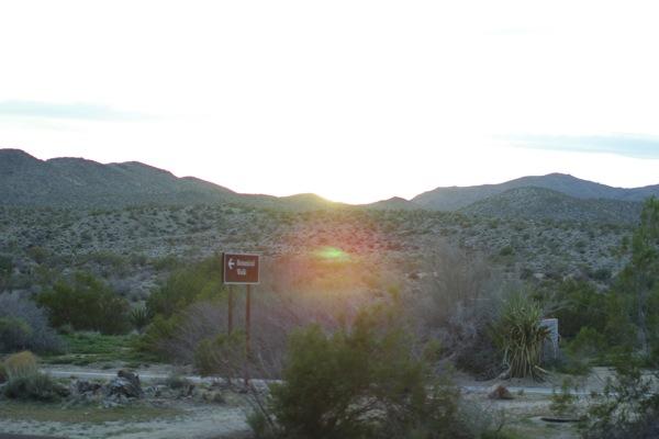 Desert Ambiences